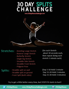 30 day split challenge